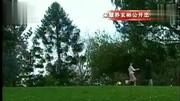 宋慧喬新劇遇最強對手,前男友玄彬主演的新劇口碑碾壓《男朋友》