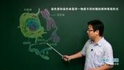 细胞外液的理化性质