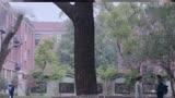 《十五年等待候鳥》 張若昀孫怡完美結局