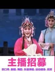 闽剧戏剧戏曲大全-珍珠塔(上集)