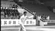2016年全国武术套路锦标赛 男子南拳 035 张龙(重庆)