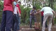 实力高手激怒中国勇士樊荣,台下就想动手,结果被40多拳KO了