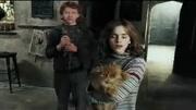 哈利 波特演員逛魔法世界主題公園