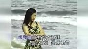 黃乙玲《風飛沙》一首非常經典又好聽的閩南語歌曲