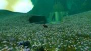 魔兽世界 灰烬使者 隐藏外观最后任务