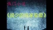 鄉村愛情9全集免費版第60集