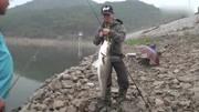 《夏利俊路亞教室》之槍柄竿超級遠投-Basshow路亞釣魚