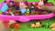 小猪佩奇水舞珠珠洗澡澡过家家