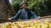 《水果传》——一条有味道的预告片