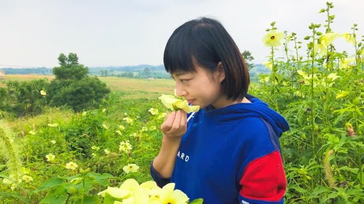 壁纸 成片种植 风景 植物 种植基地 桌面 720_405