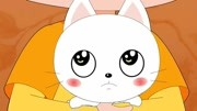 异瞳猫享受主人的热情壁咚