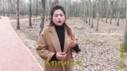 劉建東-我想你(KTV)