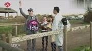 刘涛录制节目质问张翰,五任女友是否有人怀过孕,张翰的回答绝了