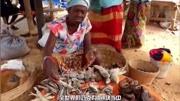 艾滋病源頭被找到!最早起源于非洲大猩猩!200年傳遍世界