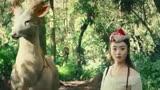 用林俊杰的《女兒情》配上趙麗穎 馮紹峰的《西游記女兒國》
