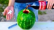 這塊西瓜我能吃一整年?
