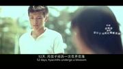 致敬青春:校園短片《如果·不愛》 暖傷催淚四角戀-[w