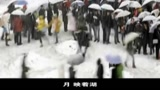 【勵志】感動億萬人的春運主題曲《下一站是幸福》