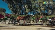 關于19款吉普牧馬人Sahara詳細實拍,看完買不買普拉多自