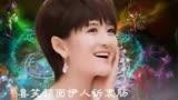 神犬小七第2季電視劇全集29集