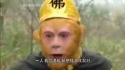 四川方言_西游马戏团《经纪人之争》!