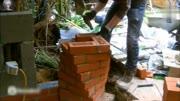 農村老師傅的砌磚教程,這樣砌墻保證不會歪!超贊