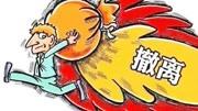 外资撤离中国市场的原因,你会感到骄傲还是担忧?