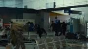 《僵尸世界大戰》全新實機宣傳片展示僵尸海