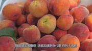 常吃桃子能排毒養顏,好處多多,但醫生說這4類人要少吃!