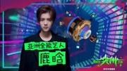 181230【鹿晗】2019浙江衛視跨年晚會 蘆葦海