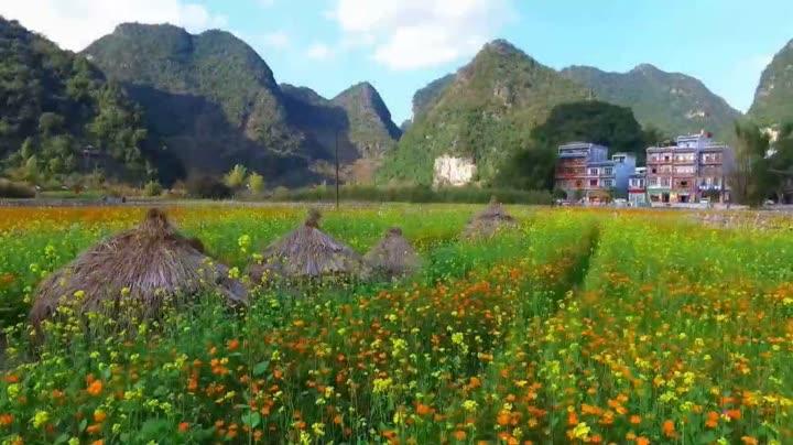 靖西紫壁山风景图片