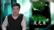 檔案解密全集2014-迷失野人山 探秘