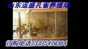 用视听语言塑造人物形象01.mov_腾讯视频