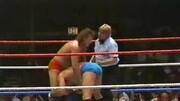 1984.7.23.WWF.MTV's.The.Brawl.to.End.it.All