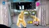 《娛樂夢工廠》:奔跑吧兄弟第四季開拍 盤點成員撕名牌套路