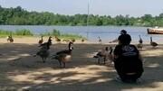 自駕金鼎湖吃了閉門羹, 意外發現了一個青山綠水的釣魚地兒!