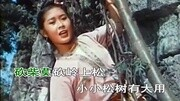 廣西山歌張公子來找劉三姐對山歌,三姐唱得太好聽了