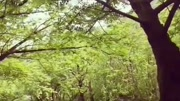 2014 5 瀘州 納溪風景區_標清