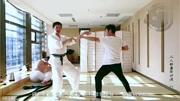 2010年武术家汇演-周真生传统虎鹤双形拳