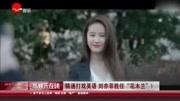 不是胡婷婷!劉亦菲雀屏中選演《花木蘭》武術英文難不倒