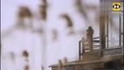 《十五年等待候鳥》 柳千仁----鄧倫