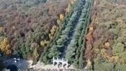 南京發現一太監墓,墓中一行文字,狠狠打了外國專家的臉!