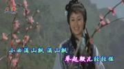 電影《少林寺》:覺遠血戰王仁則,為父報仇,打的那叫一個精彩