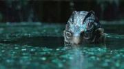 當愛情跨越人倫 當啞女愛上人魚 6分鐘看完奇幻人獸戀《水形物語》