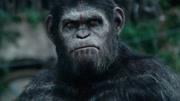 猩球崛起 凱撒開口說話