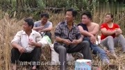 高手在农村,牛人发明用直升机航模喷洒农药,非常实用!