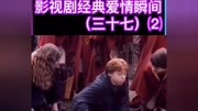 【自制】哈利波特與死亡圣器 羅恩赫敏劇情版cut3