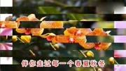 2016年北京工体音乐拿铁超嗨套曲