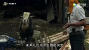 [紀錄片]核能安全嗎?—福島核泄漏說明什么