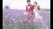 為何紫色最顯人高貴?